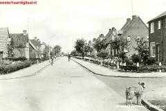 borggrevestraat_(Large)