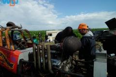 DSCF5594_09-03-2012