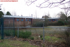 kleuterschooldespingplank(Large)