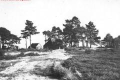 Westerhaar-Huis_van_Roelofs_achter_de_school_(jaren_40)_(Large)