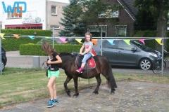 IMG_9538_08-18-2013