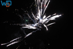 IMG_4850_06-09-2012