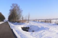 paterswal_bij_sneeuw_(Large)