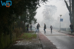 IMG_1448_12-31-2011