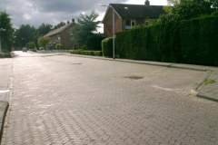 boekweitstraat_2005