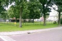 hertenkamp_2005