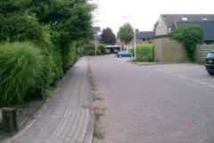 leliehoek_straat