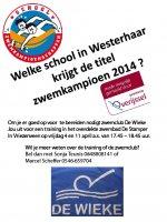 schoolzwemkampioenschap-2014.jpg